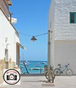 Jayne-Pointer-Lanzarote-Through-the-Alley