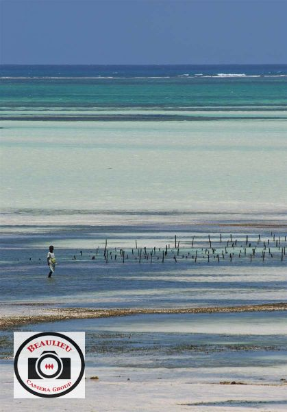 62-Ralph-Ellis-Zanzibar-Beach