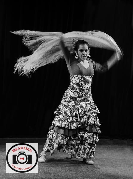 7-Rob-Snellgrove-Flamenco