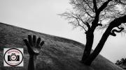 Hilary-Flaxman-Reach-For-the-Sky
