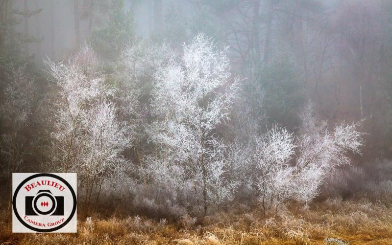 Cathryn-Baldock-A-Walk-Through-Narnia